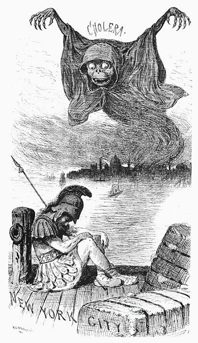 Cholera Cartoon, 1883 Print by Granger