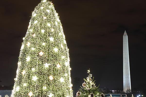 Christmas At The Ellipse - Washington Dc - 01137 Print by DC Photographer
