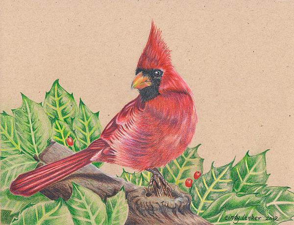 Cindy Lenker - Christmas Cardinal