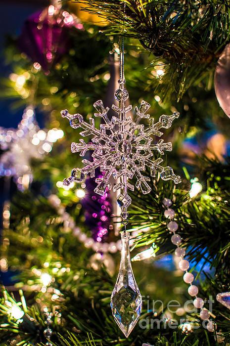 Julie Chambers - Christmas Crystal