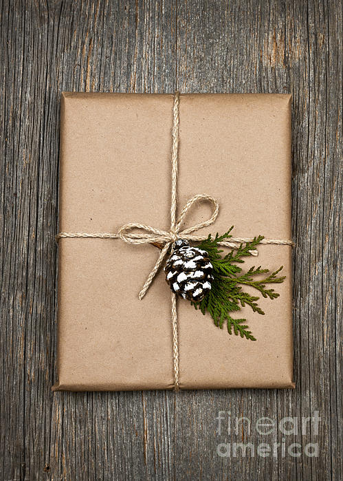 Christmas Present  Print by Elena Elisseeva