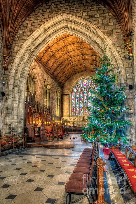 Christmas Tree Print by Adrian Evans