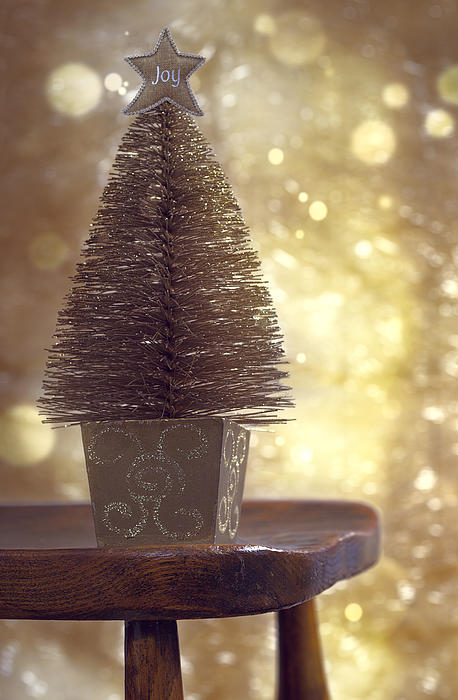 Christmas Tree Print by Amanda And Christopher Elwell