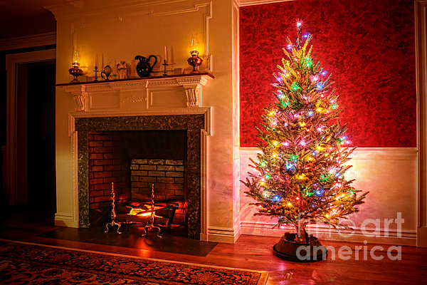 Christmas Tree Print by Olivier Le Queinec