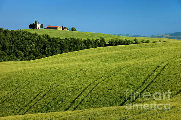 Church In The Field Print by Brian Jannsen