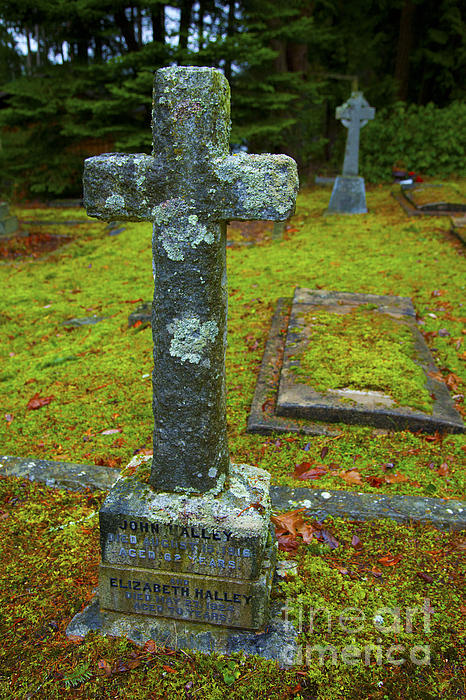Churchyard Cross Print by Graham Foulkes