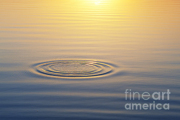 Circles At Sunrise Print by Tim Gainey