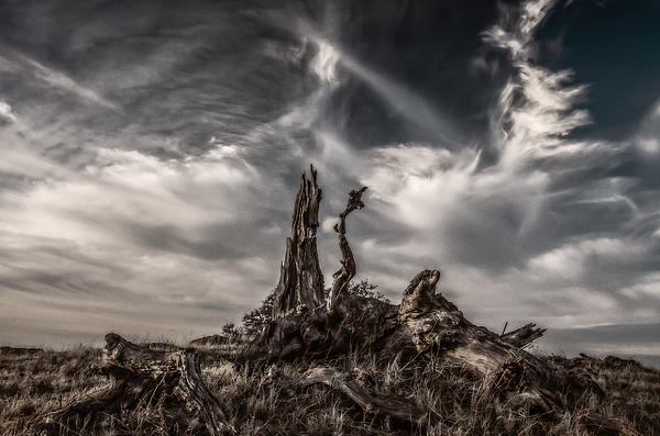 Cirrus Clouds At Sunset Print by Marc Crumpler