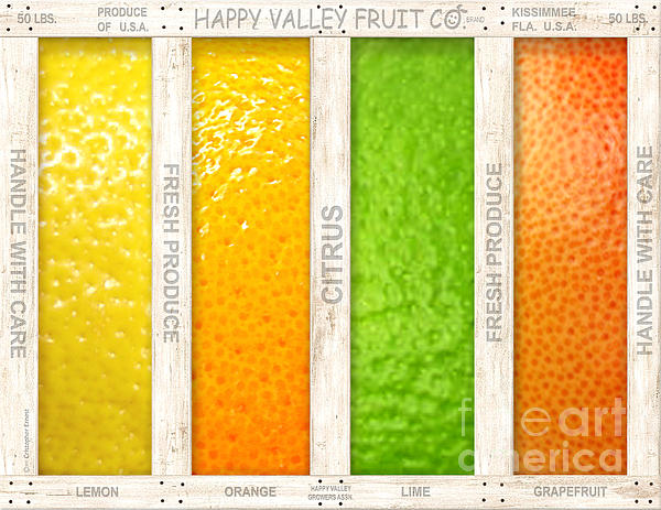 Cristophers Dream Artistry - Citrus
