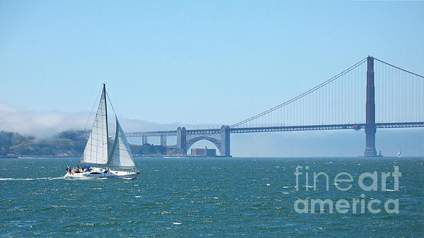 Connie Fox - Classic San Francisco Bay