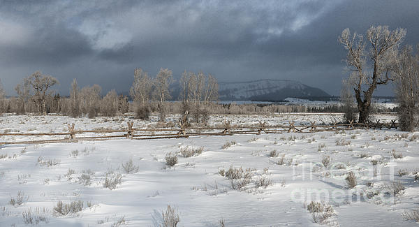 Clearing Storm In The Tetons Print by Sandra Bronstein