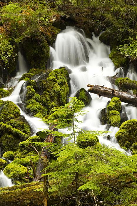 John Brueske - Clearwater Falls 3