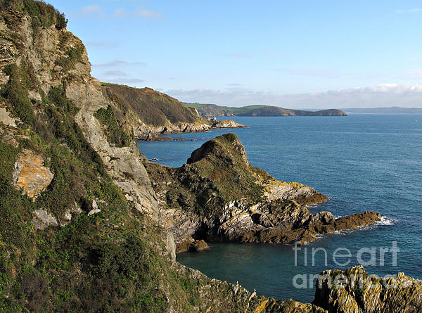 Cliffs In Cornwall Near Mevagissey Print by Kiril Stanchev