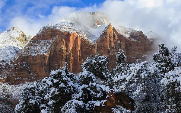 Cliffs Of Zion Print by Laura Zirino