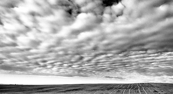 Clouds Over A North Dakota Field Print by Jeff  Swan