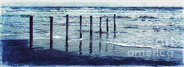 Coast  Print by Svetlana Novikova