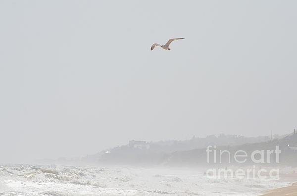 Coastal Beach Serenity Print by Adspice Studios