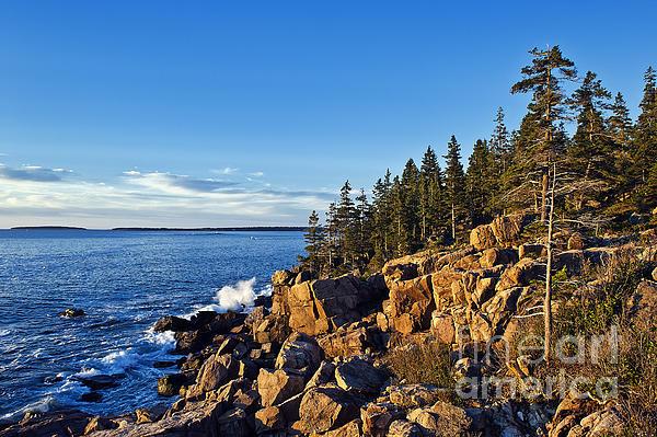 Coastal Maine Landscape. Print by John Greim