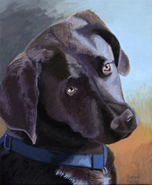 Coco's Portrait Print by Margaret Sarah Pardy