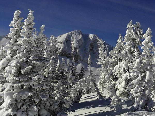 Cody Peak After A Snow Print by Raymond Salani III
