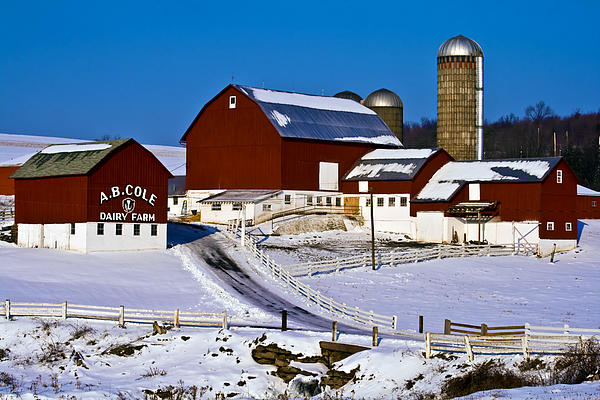 Cole Dairy Farm Print by David Simons