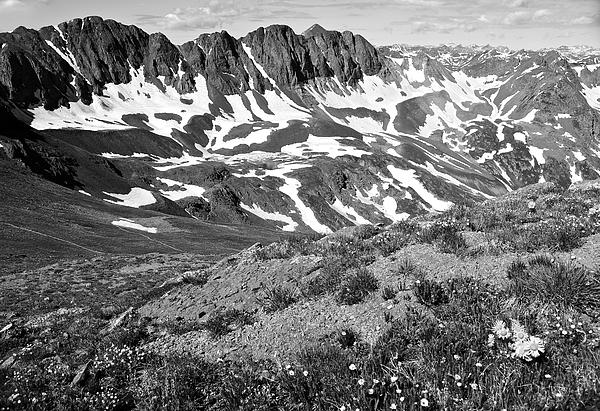Colorado Black And White Print by Aaron Spong