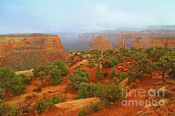 Colorado Natl Monument Snow Coming Down The Canyon Print by Roena King