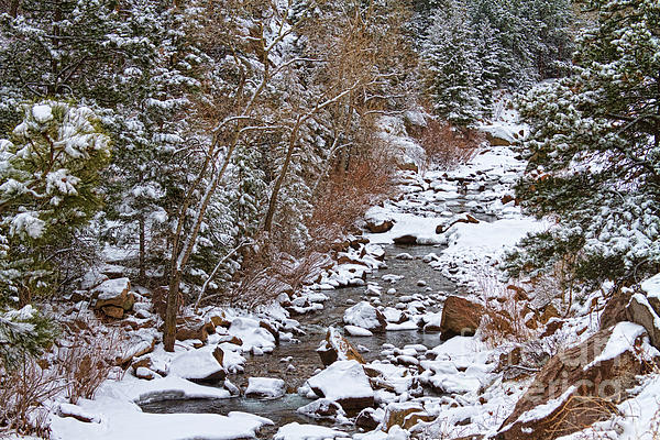 Colorado St Vrian Winter Scenic Landscape View Print by James BO  Insogna