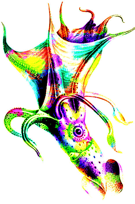 Colorful abstract octopus by eti reid for Colorful octopus painting