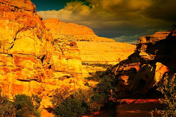 Colorful Capital Reef Print by Jeff  Swan