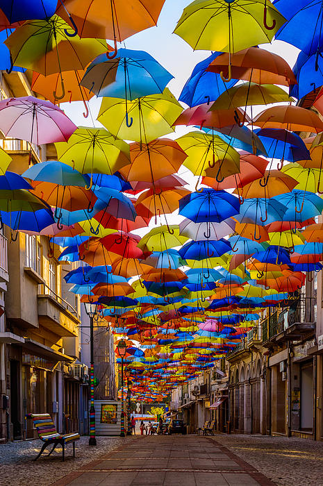Colorful Floating Umbrellas Print by Marco Oliveira