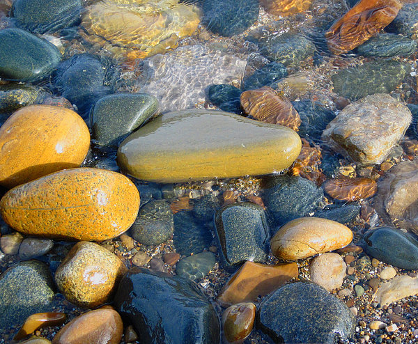 Mary Bedy - Colorful Shore Rocks