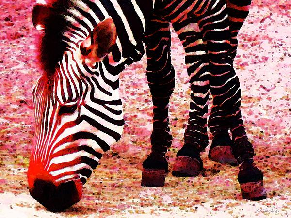 Colorful Zebra - Buy Black And White Stripes Art Print by Sharon Cummings