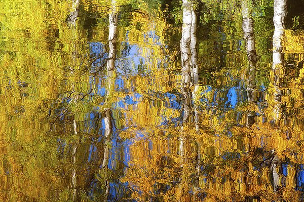 Colors and Reflections Photograph