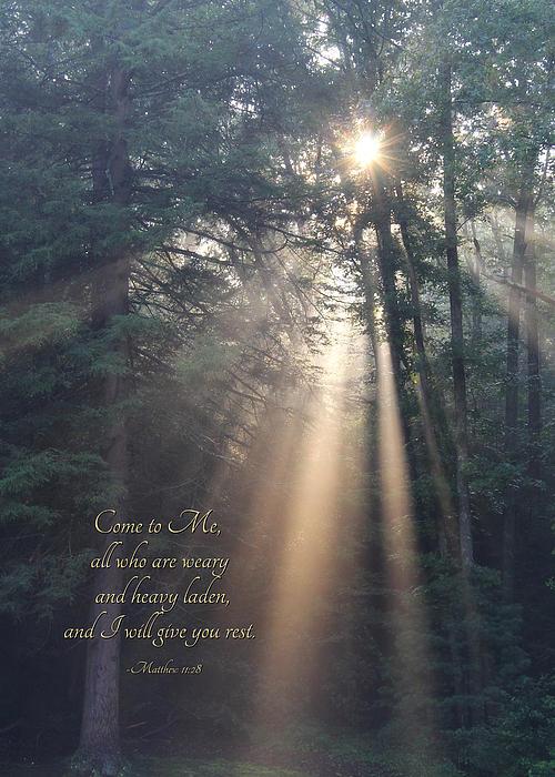 Come To Me Print by Lori Deiter