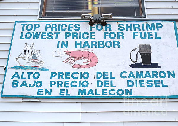Commercial Shrimp Business In Ft Myers Florida Posted Sign Print by Robert Birkenes