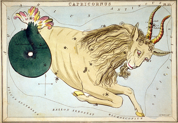 Constellation: Capricorn Print by Granger