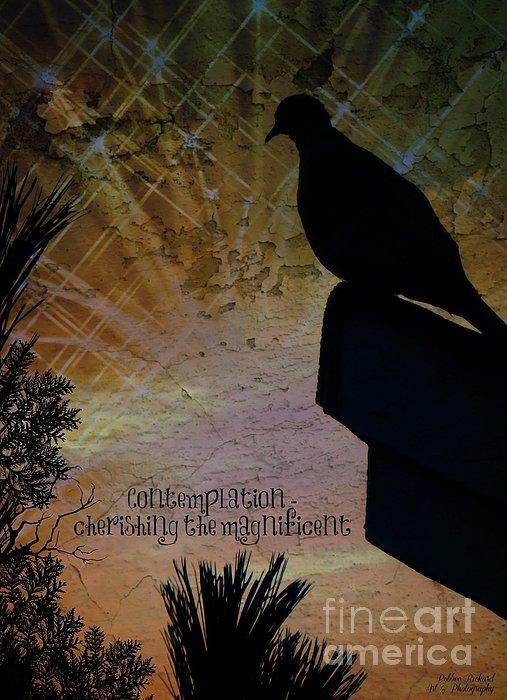 Bobbee Rickard - Contemplation Inspirational