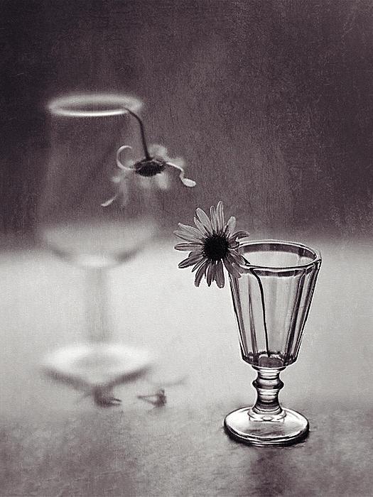 3d Black and White Still Life art Conversation