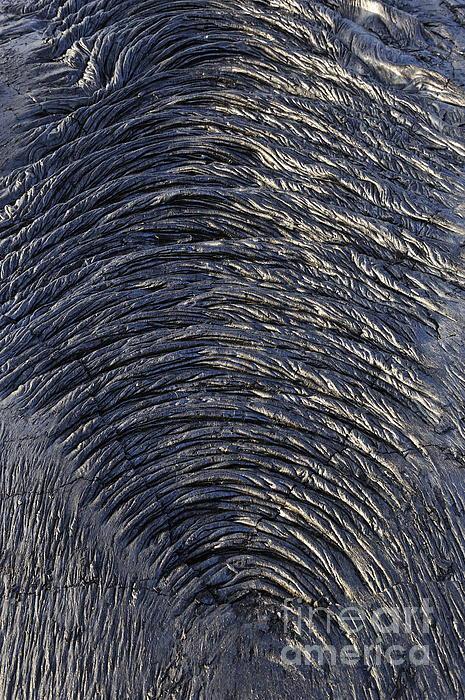 Cooled Pahoehoe Lava Wrinkles Print by Sami Sarkis