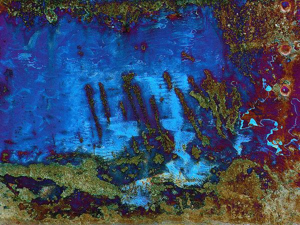 Coral Reef Print by Tom Druin