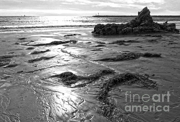 Corona Del Mar Coast - Black And Awhite Print by Gregory Dyer