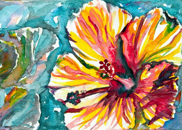 Cottage Hibiscus Print by Eve  Wheeler