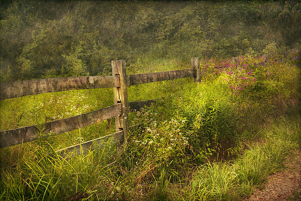 Country - Fence - County Border  Print by Mike Savad