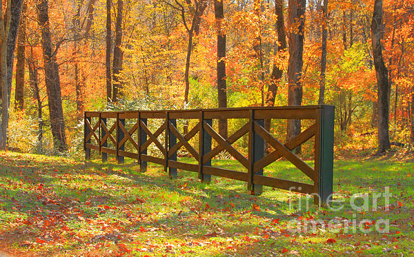 Country Fence Print by Geraldine DeBoer