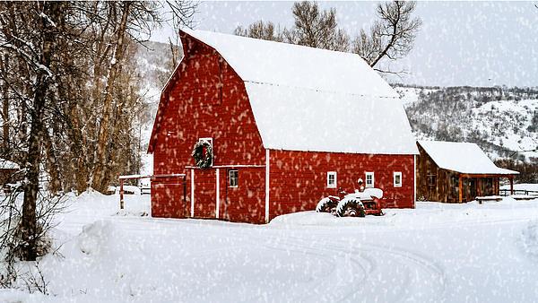 Country Holiday Barn Print by Teri Virbickis