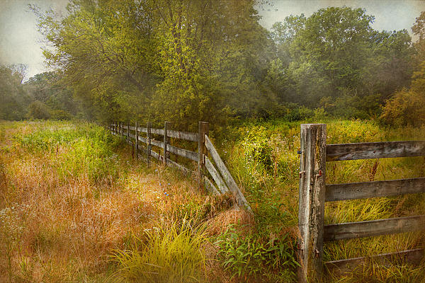 Country - Landscape - Lazy Meadows Print by Mike Savad