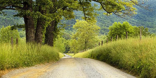 Country Lane In The Smokies Print by Andrew Soundarajan