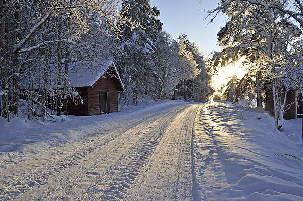 Country Road Print by Conny Sjostrom