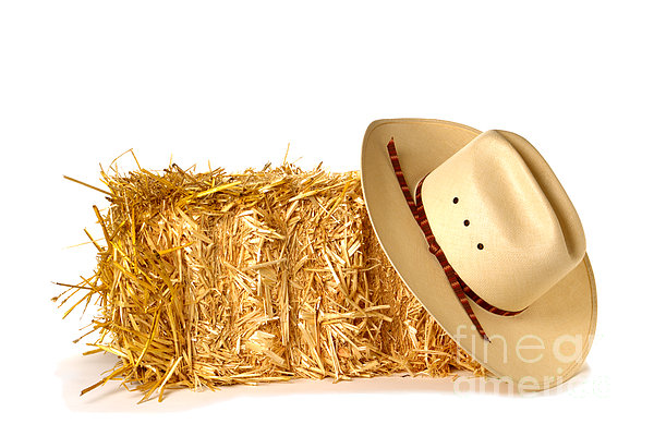 Cowboy Hat On Straw Bale Print by Olivier Le Queinec